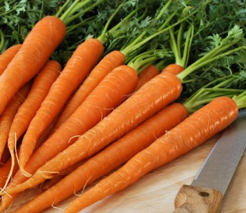 carrot20tendersweet